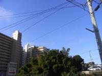 Wakalog_081126