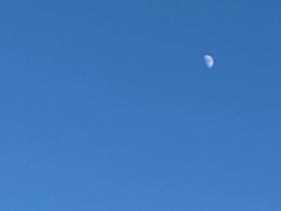 201223w