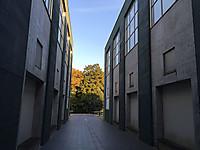 Img_4013